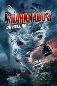 Sharknado 3: Oh Hell No! as General Gottlieb