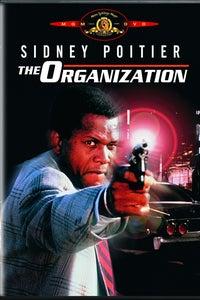 The Organization as Benjy