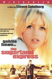 The Sugarland Express as kapitan Tanner
