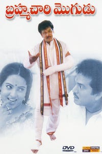 Brahmachari Mogudu as Madhavayya