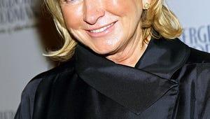 Fox and Martha Stewart Team Up on Semiautobiographical Sitcom