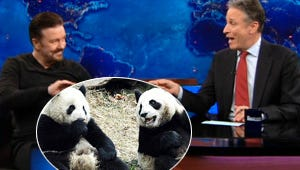 Top Moments: Panda Sex with Jon Stewart and Ricky Gervais and Revenge's Killer Reveal