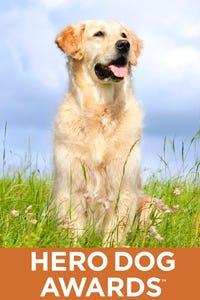 American Humane Association Hero Dog Awards 2014