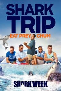 Shark Trip: Eat Prey Chum