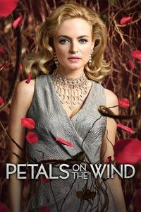 Petals on the Wind as Corrine