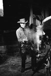 Michael Emmet as Webb