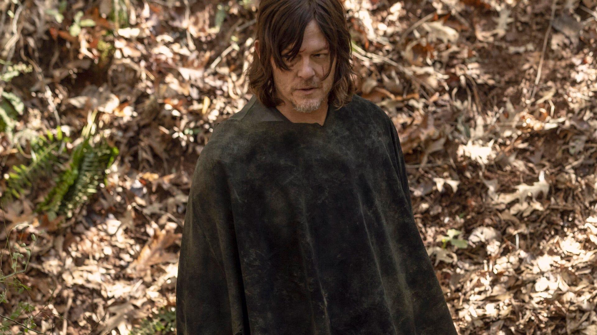 Norman Reedus, The Walking Dead
