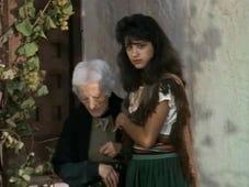 The New Zorro, Season 1 Episode 19 image