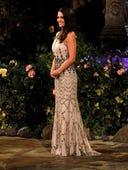 The Bachelorette, Season 10 Episode 1 image