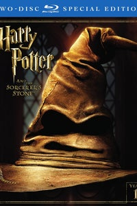 Harry Potter and the Sorcerer's Stone as Madame Hooch