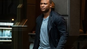 Arrow's David Ramsey Calls Series Finale 'An Expression of Gratitude to Our Fans'