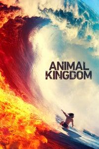 Animal Kingdom as Nicky Belmont
