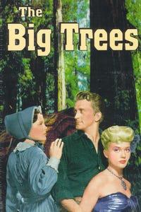 The Big Trees as Jim Fallon