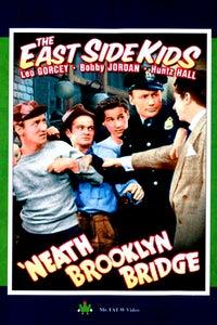 'Neath Brooklyn Bridge as Soup Customer