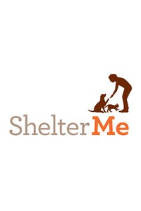 Shelter Me: Partners for Life