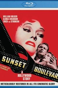 Sunset Boulevard as Himself
