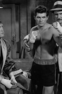 Dewey Martin as Jim Darcy