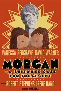 Morgan! as Morgan Delt