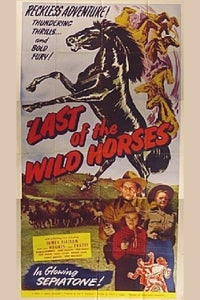 Last of the Wild Horses as Remedy Williams
