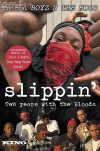 Slippin': Ten Years with the Bloods