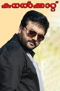 Kanalkkattu as Nathu Narayanan
