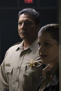 Gil Birmingham as Navy Captain Steven Douglas