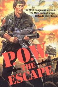 P.O.W. the Escape as Col. James Cooper