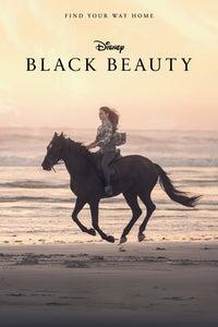 Black Beauty as Black Beauty (voice)