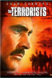 The Terrorists as Ray Petrie