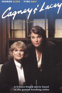 Cagney & Lacey: True Convictions as Matt Wylie