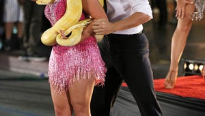 Dancing with the Stars: Bindi (and Her Snake) Totally Charmed Us in the Premiere