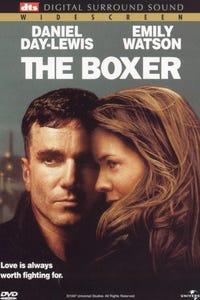 The Boxer as Danny Flynn