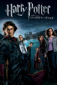 Harry Potter and the Goblet of Fire as Cedric Diggory