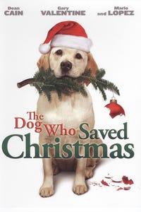 The Dog Who Saved Christmas as Stewey McMann