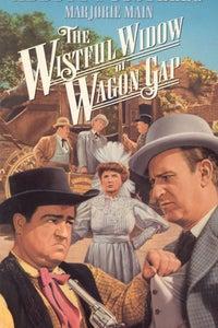 The Wistful Widow of Wagon Gap as Undertaker