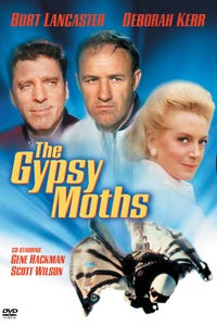 The Gypsy Moths as Waitress