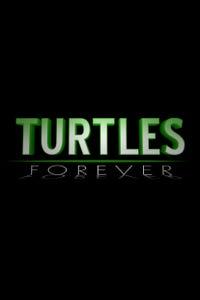 Teenage Mutant Ninja Turtles: Turtles Forever as Splinter