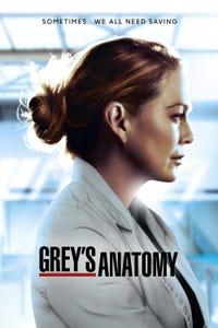 Grey's Anatomy as Rachel