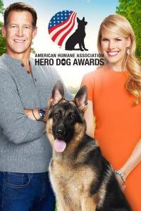 American Humane Association Hero Dog Awards 2016