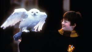 All Eight Harry Potter Movies Are Heading to Peacock