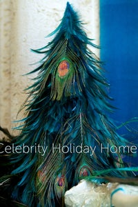 Celebrity Holiday Homes