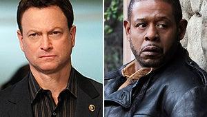 CBS Renews CSI: NY, Cancels Criminal Minds: Suspect Behavior