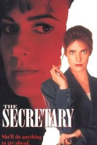 The Secretary as Mary Quinn