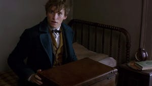 Watch a Sneak Peek From  Fantastic Beasts and Where to Find Them