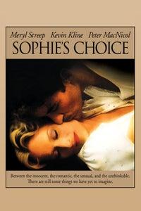 Sophie's Choice as Stingo