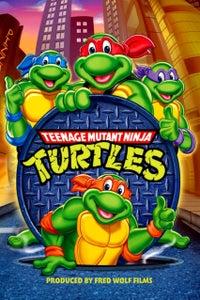 Teenage Mutant Ninja Turtles as Master Splinter