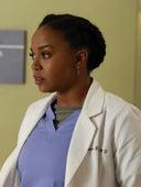 Grey's Anatomy, Season 13 Episode 13 image