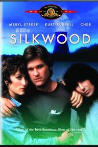 Silkwood as Drew Stephens