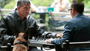 8 Things to Expect from Person of Interest's Fourth Season