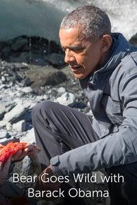 Bear Goes Wild with Barack Obama